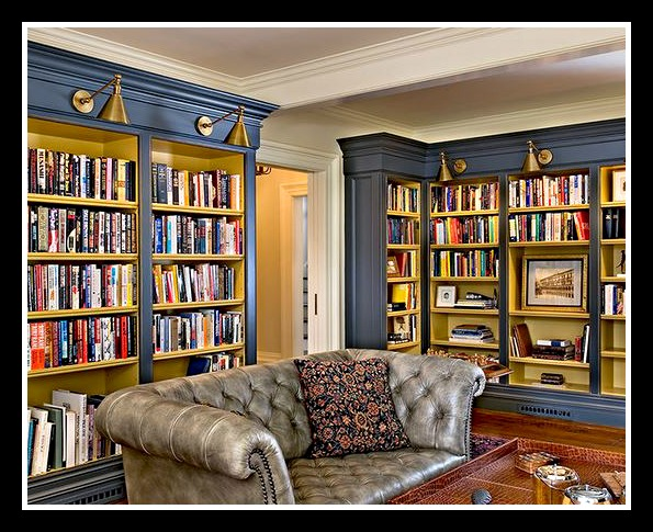 bookcases with art lights