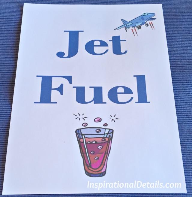 airline/pilot party ideas